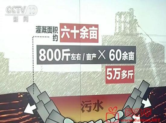 66666.jpg